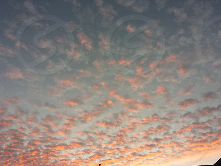 Pink clouds  photo