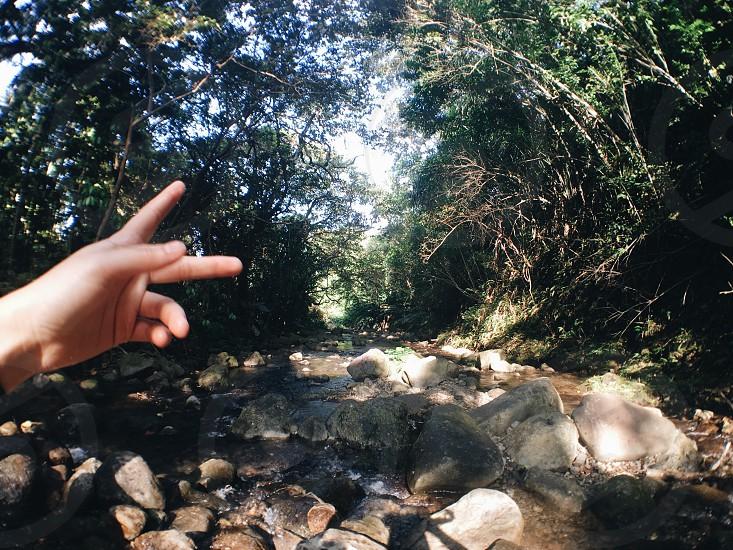 Hawai'i trail hike peace sign peace Oahu nature photo