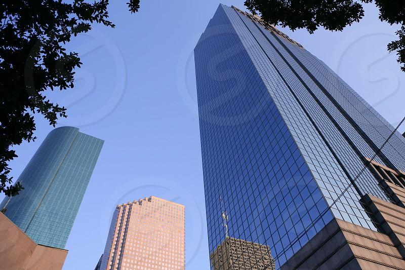 Houston Texas blue buildings skyscraper city urban view photo