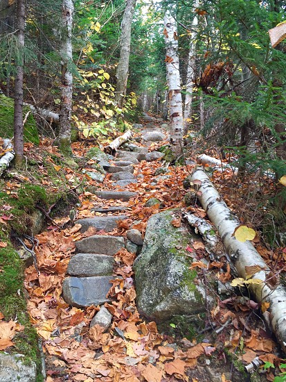 stone pathway on hill slope photo