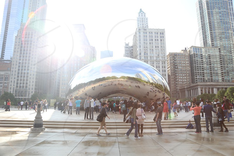 The Bean / Chicago's Cloud Gate photo