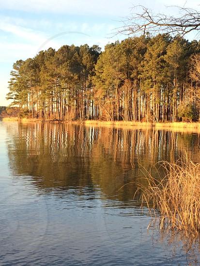 Harris lake North Carolina  photo