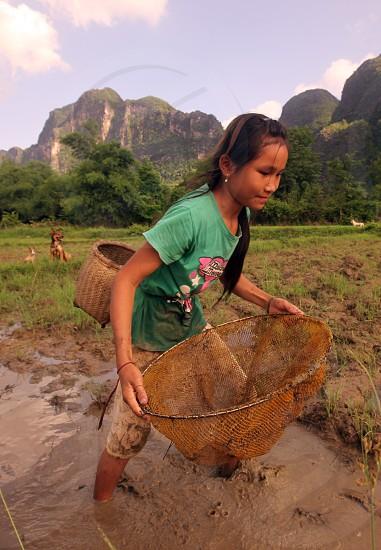Kinder suchen nach einem Regentag in den Reisfeldern nach Kleifischen an der Landstrasse 12 beim Dorf Mahaxai Mai von Tham Pa Fa unweit der Stadt Tha Khaek in zentral Laos an der Grenze zu Thailand in Suedostasien. photo