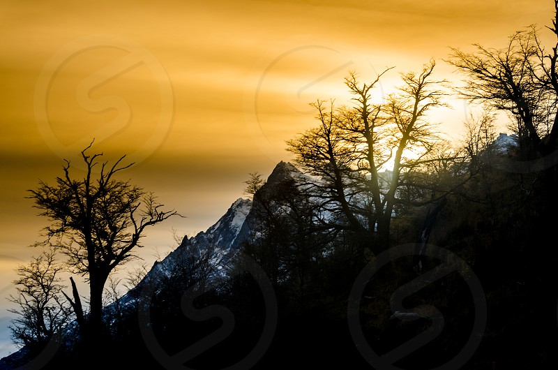 sunset torres del paine shadows mountains trees autumn sky diagonal contrast mood inspired photo nikon d7000 landscape location yellow colors travel tourism nature photo