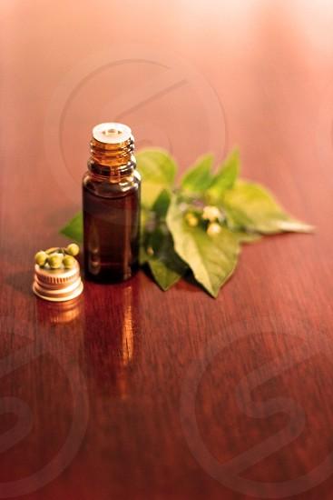 brown glass bottle near green herbal leaves photo