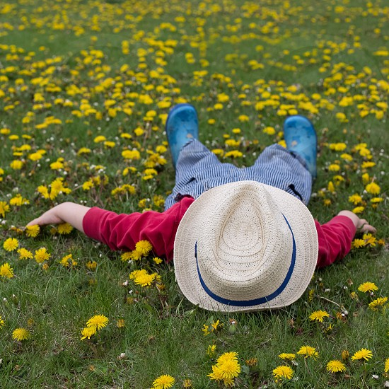 person in red sweater wearing brown fedora hat lying on yellow flower field photo