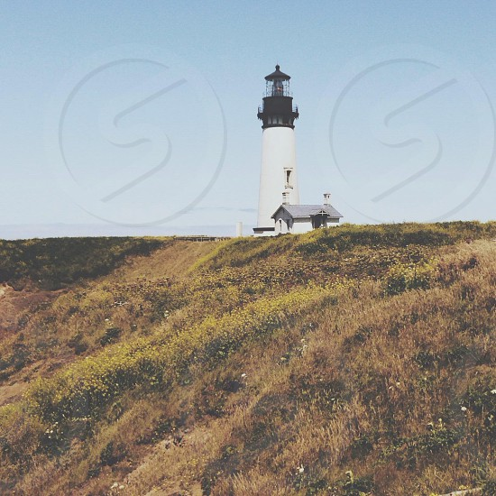 Yaquina Head Lighthouse  photo