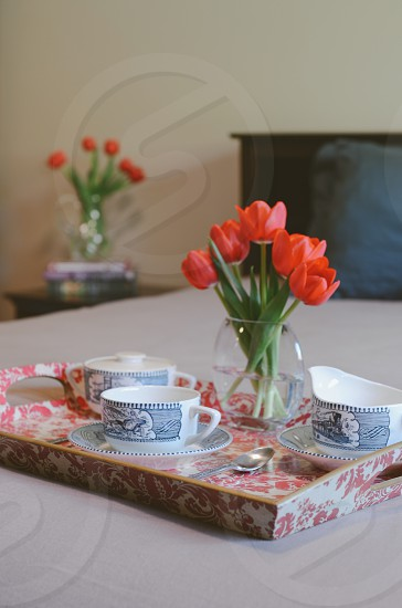 red tulips near white and blue ceramic cup photo
