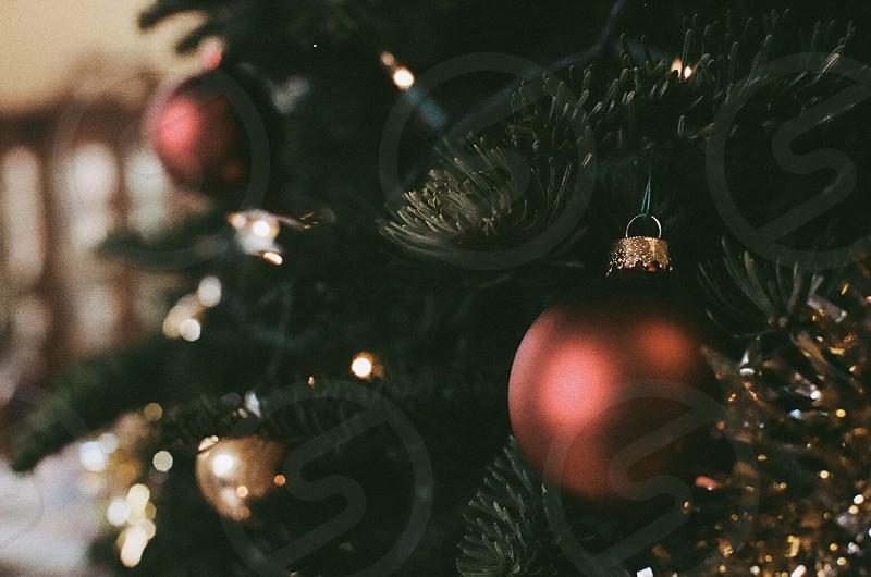 red christmas ball photo