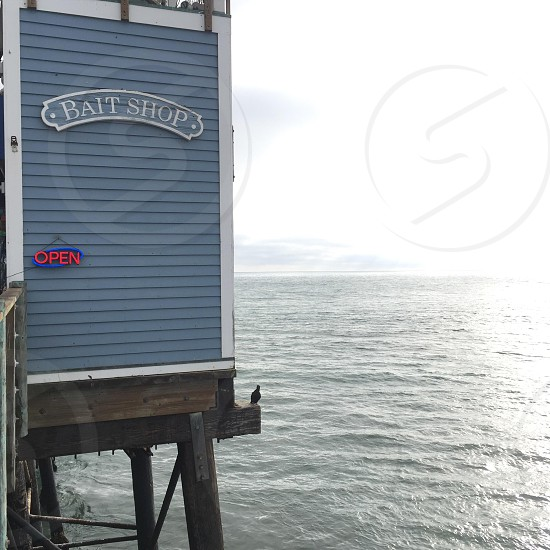 blue and white wooden bait shop by the blue ocean photo