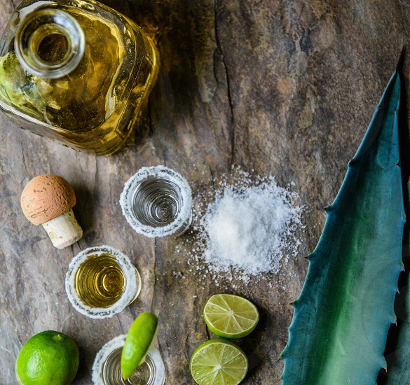 close up photography of green sliced lemon beside salt and clear glass bottle photo