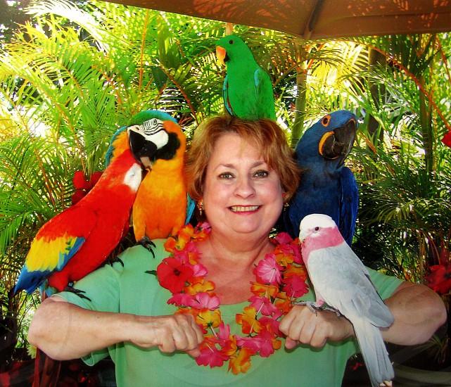 New friends in Hawaii  photo