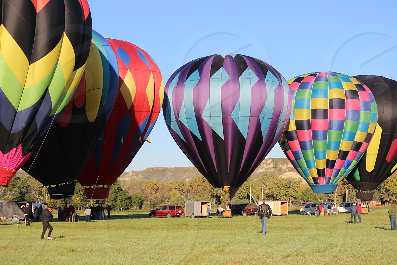purple hot air balloon photo