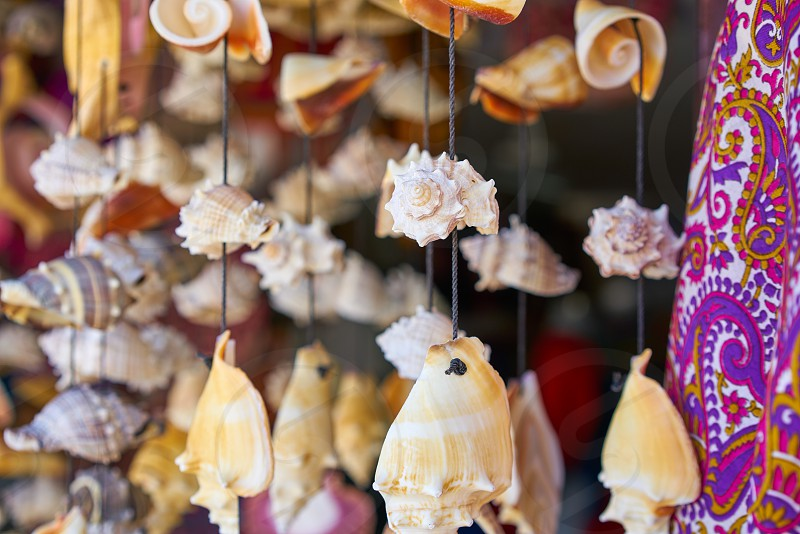 seashell mobile wind chime hanging handcraft souvenir from mexico photo