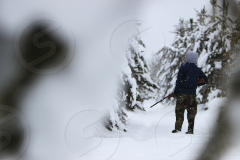 white winter snow snowy woods forest trees branches trail look watch wait peer gun firearm hunt hunting hunter outdoorsman outdoors outside gray walk stalk active photo