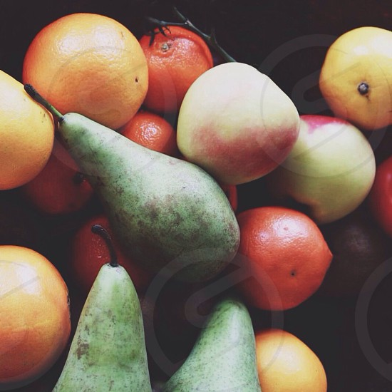 green pear orange and apples photo