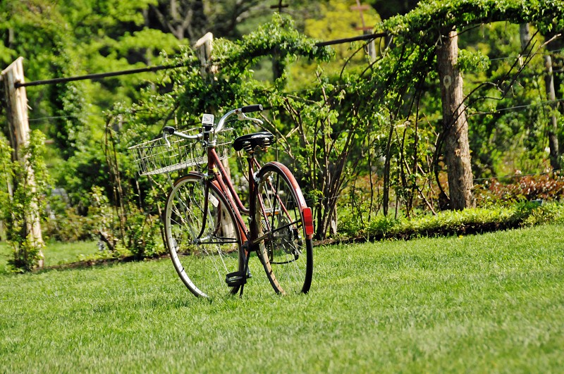 bicycle on freshly cut grass at park photo