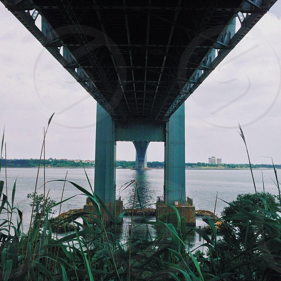 Under the Verrazano bridge  photo