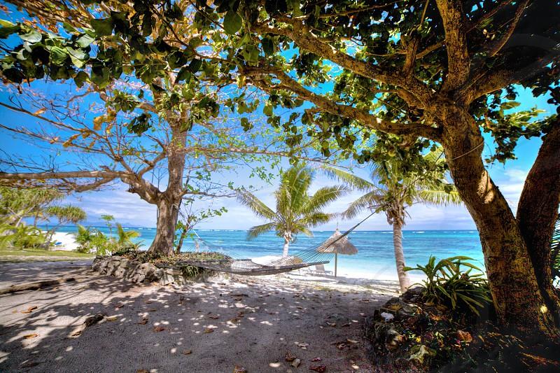 Hammock over golden sand on a Fiji beach photo