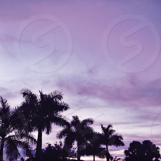 Aesthetic sky photo
