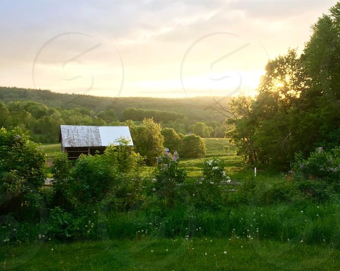 Farm barn summer green sun sunset New York fields  photo