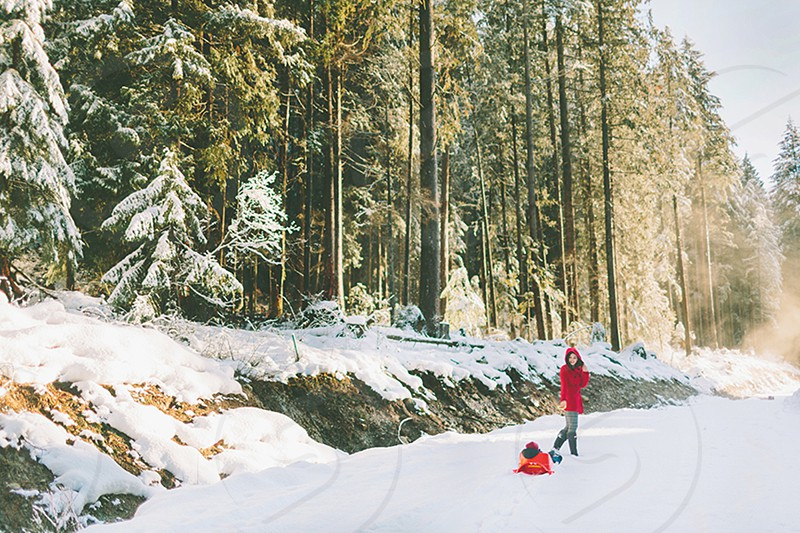 A mother pulling her son in a red sled through a snowy forest photo