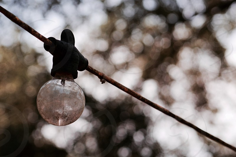 Lightbulb adventuring outdoors nature vintage urban  photo