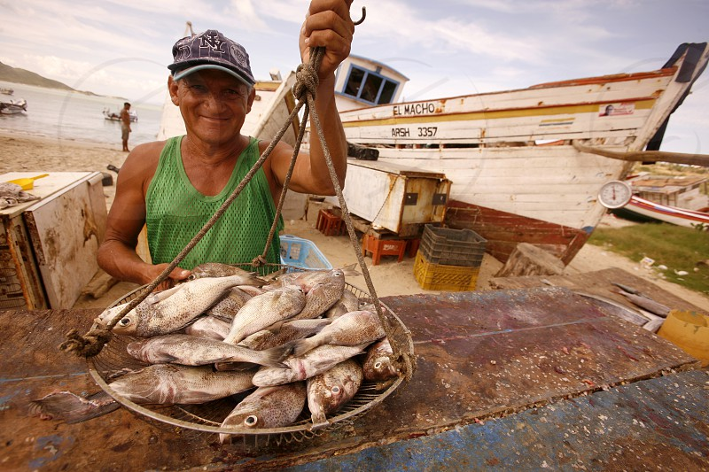 the fish market at the beach in the town of Juangriego on the Isla Margarita in the caribbean sea of Venezuela. photo