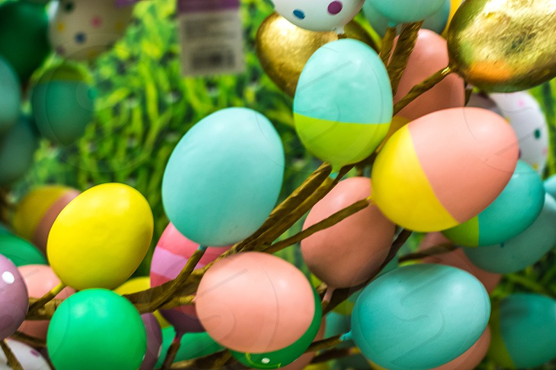 Eater spring eggs colored pasteldecoration decorate photo