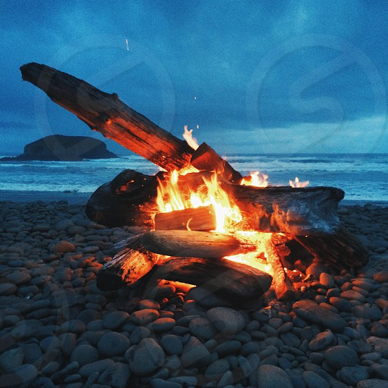 lit bonfire on gray rocks near seashore photo