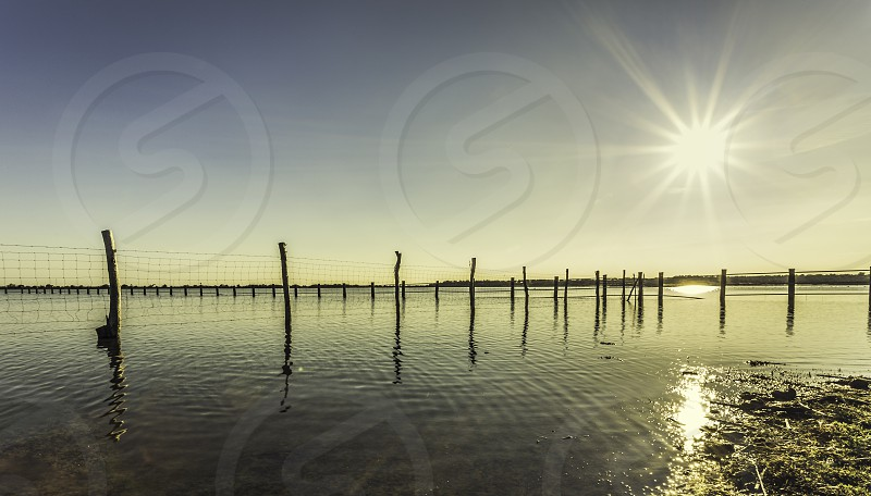 Wooden stick and wire fence on a lake front of a blue sky and sun photo