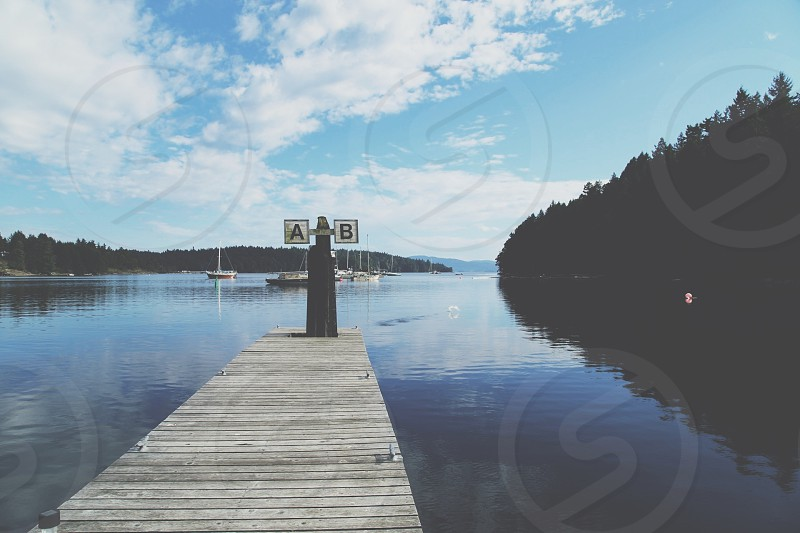 Peaceful Dock in Canadian Gulf Islands photo