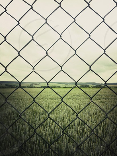 black chain link fence  photo