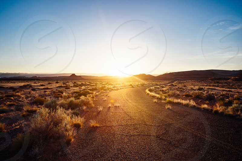 Summer in Arizona. photo