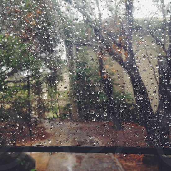 The view inside my umbrella photo