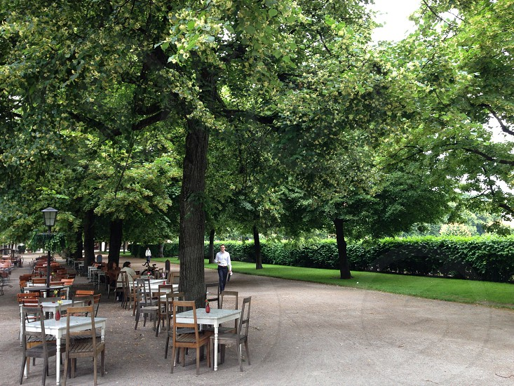 Outdoor cafe seating tree lined garden green photo