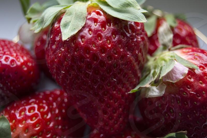 red strawberry in macroshot lens photo