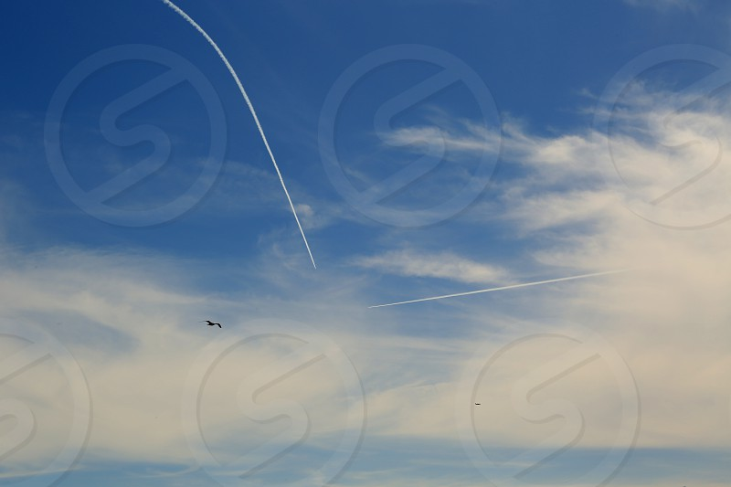 Two planes and a bird heading in the same direction high in the sky. photo