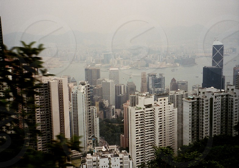 View from the Peak Hong Kong photo
