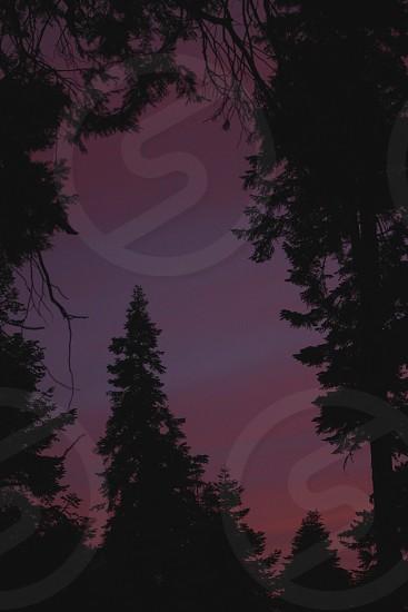 sunset  in the Sierra Nevadas photo