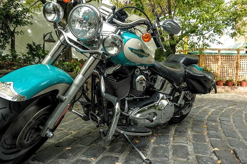 Harley Davidson motorcycle photo