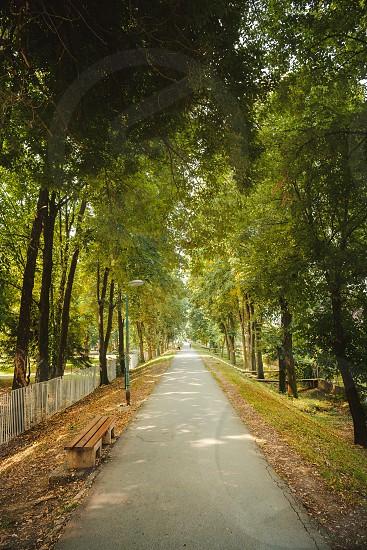 Town rampart landscape summer season during day.  photo