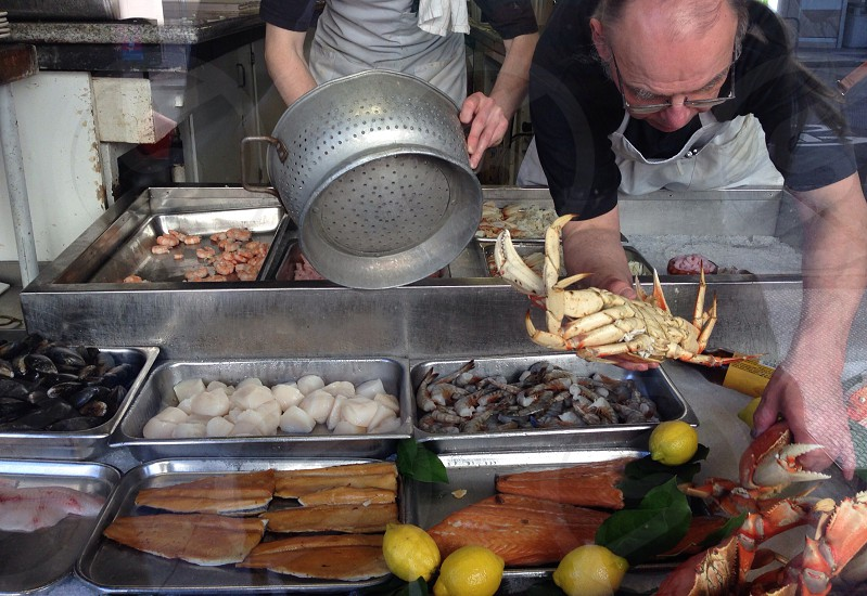 assorted seafood bins in market photo