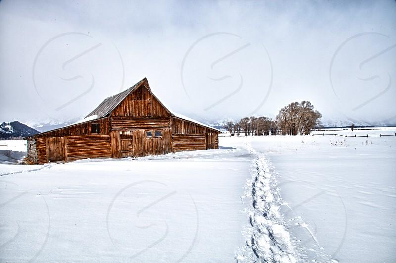 barn in winter photo