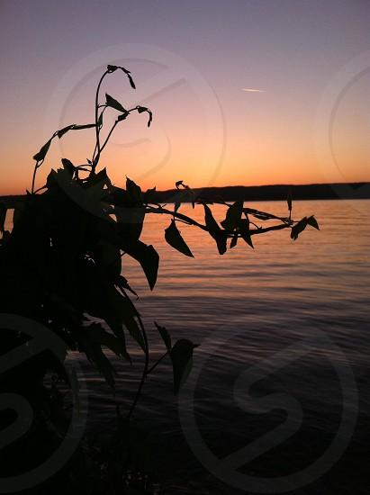 orange sunset reflecting on water photo