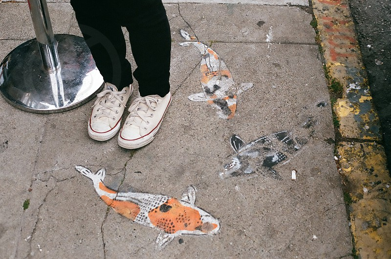 orange and white fish print photo