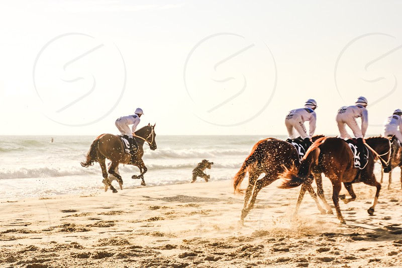 jockeys on horseback racing along the beach at Surfers Paradise in Queensland Australia photo