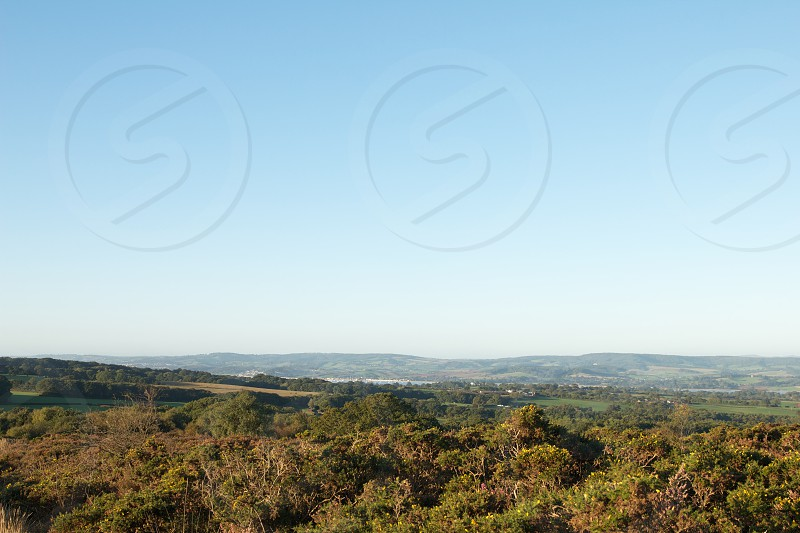 A view over the River Exe from Woodbury Common Devon UK. photo
