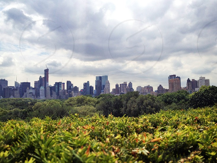 View from the top of the met.  photo