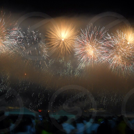 fireworks on display photo